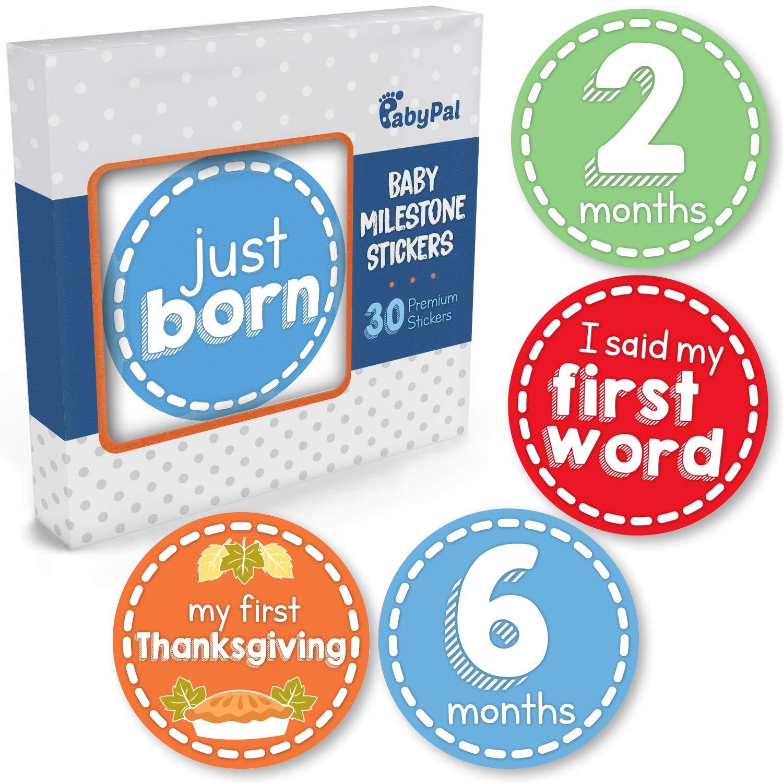 Amazon.com: Juego de 30 pegatinas mensuales para recién ...