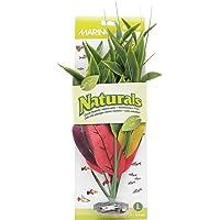 Marina Naturals Dracena Silk Plant, Large, Red/Yellow