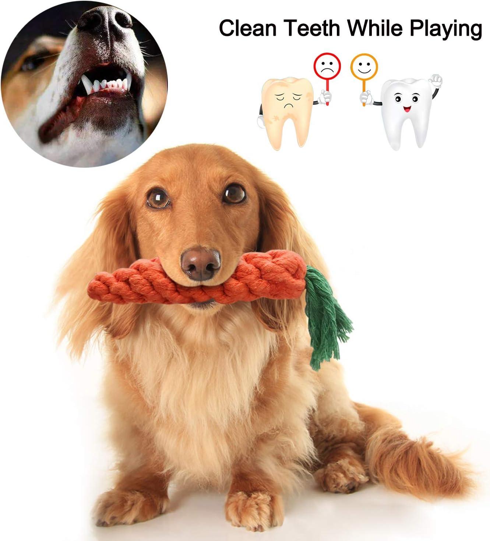 GoMaihe Giocattoli per Cani Set di 12 Pet Denti Pulito Accessori Regalo per Piccolo Cagnetto Solitario per Mantenere Il Cane Sano Giochi per Cani Giocattoli di Cotone Corda da Masticare Durevole