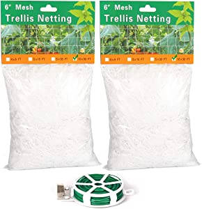 Trellis Netting 2 Pack, 10x30ft Heavy Duty Polyester Garden Trellis Net, Gardening Netting for Plants Vines Vegetables to Grow