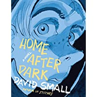 Home After Dark - a Novel
