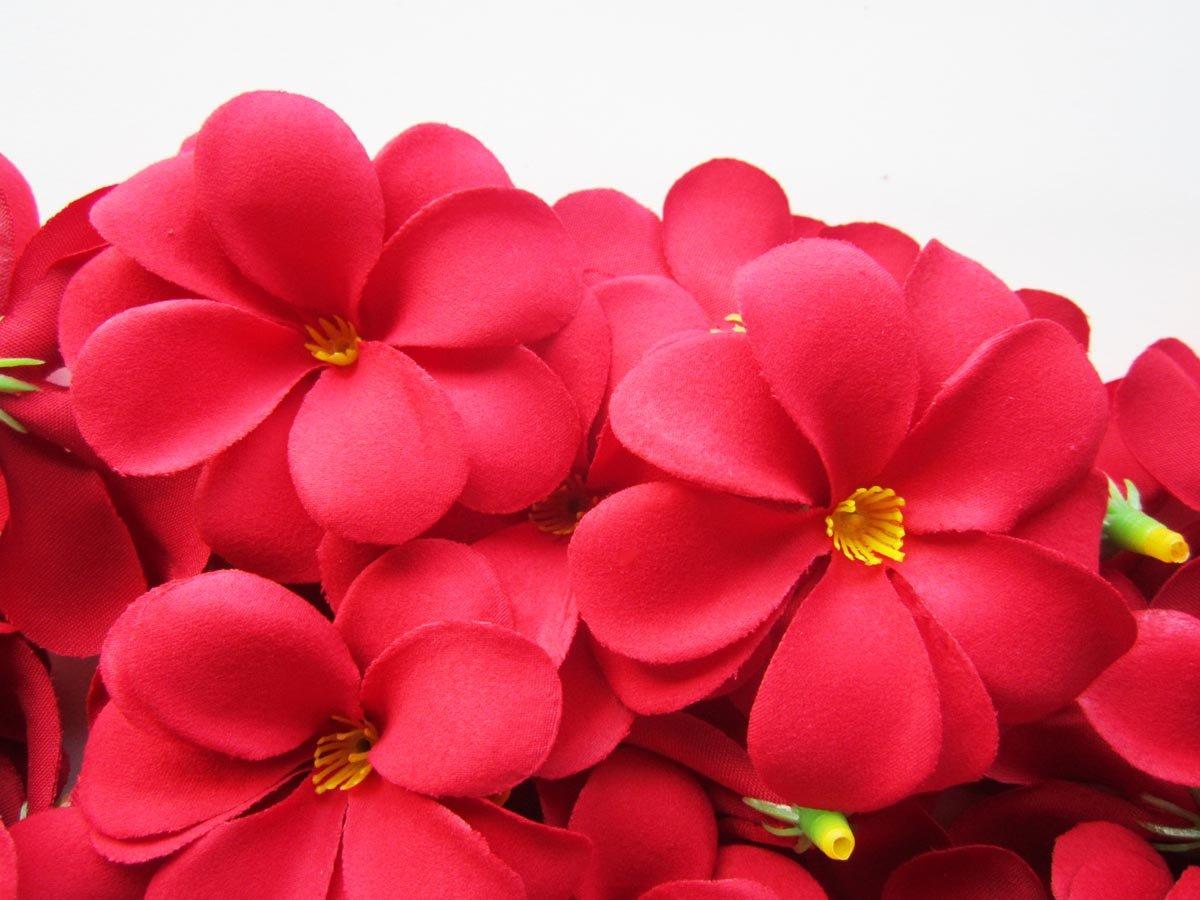 24-Red-Hawaiian-Plumeria-Frangipani-Silk-Flower-Heads-3-Artificial-Flowers-Head-Fabric-Floral-Supplies-Wholesale-Lot-for-Wedding-Flowers-Accessories-Make-Bridal-Hair-Clips-Headbands-Dress