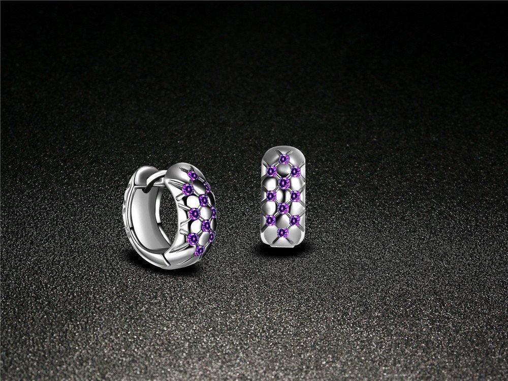 Skyllc Women Exquisite Artificial Purple Crystal Rhinestone Hoop Earrings Lady Jewerly Silver