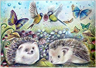 Ogquaton Cute Hedgehog DIY Colorful Flower 5D Diamond Painting Full Kits, Crystal Rhinestone Embroidery Pictures Arts Craft Gift Durable and Practical