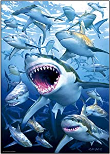 DCIDBEI Rhinestone Diamond Painting,DIY 5D Diamond Painting by Number Kit Cute Shark Rhinestone Embroidery Cross Stitch Kits Supply Arts Craft Canvas Wall Decor Stickers Home Decor 12x16 inches