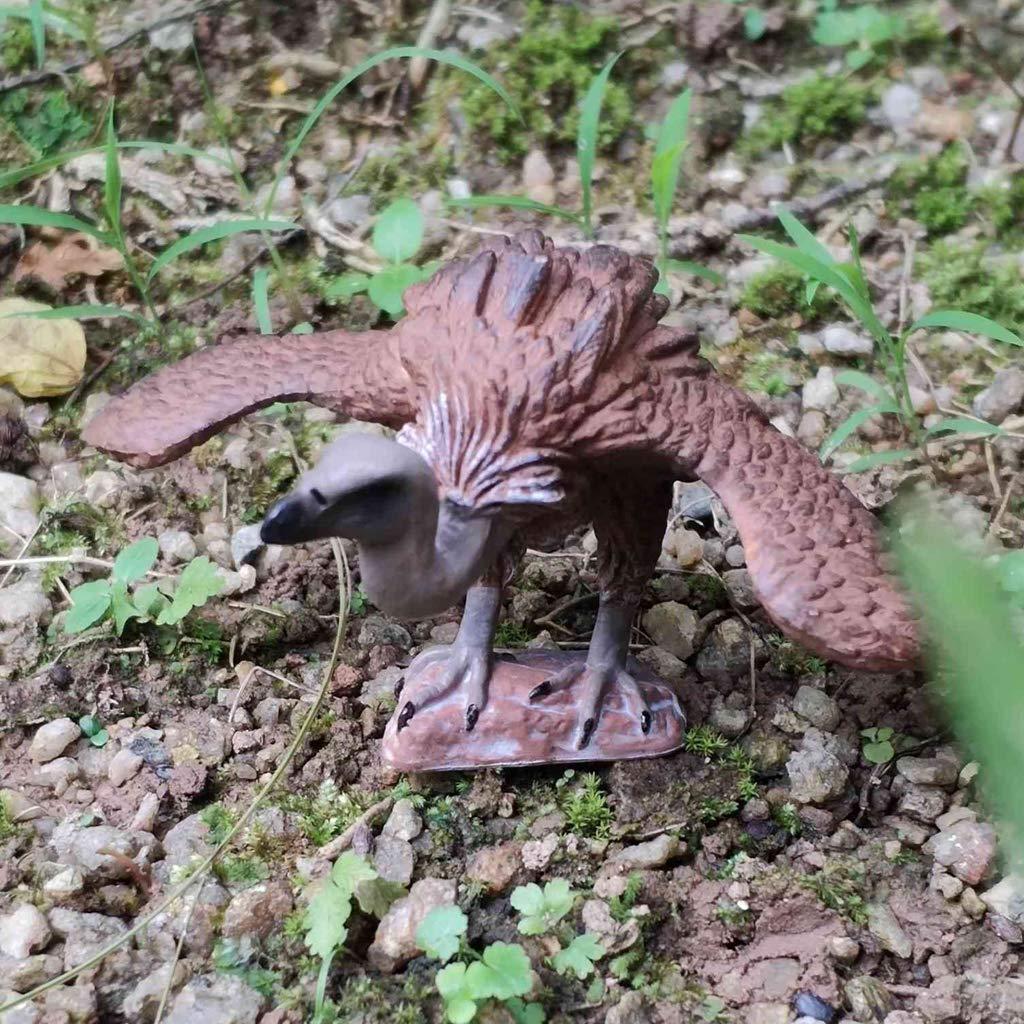 Fenteer Animaux R/éaliste Sculptures Jouet Figurine Oiseau Micro Paysage Aigle 1