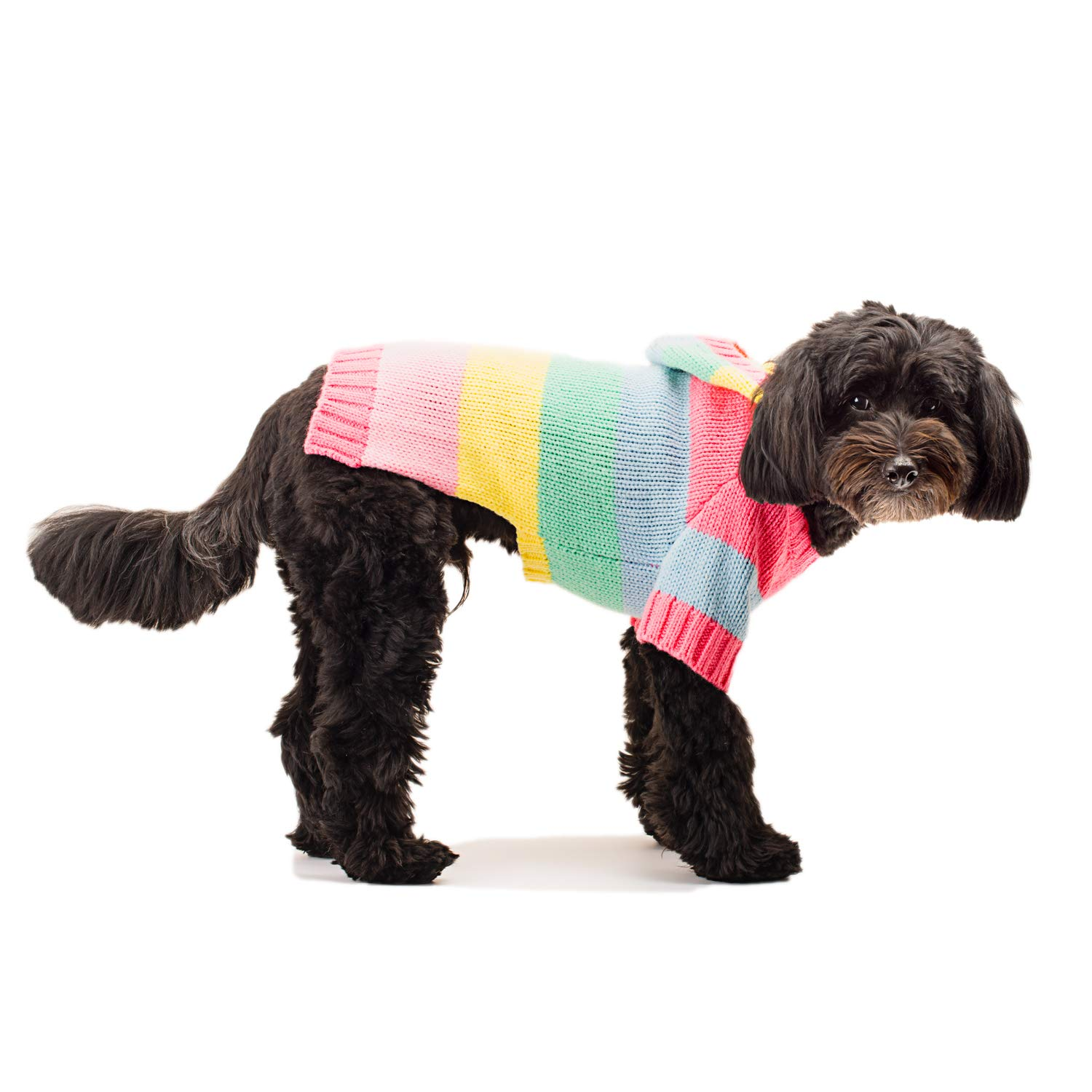 Stinky G Happy Stripes Hoodie Dog Sweater