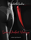 Love's Perfect Vintage (Lesbian Light Reads Book 1)