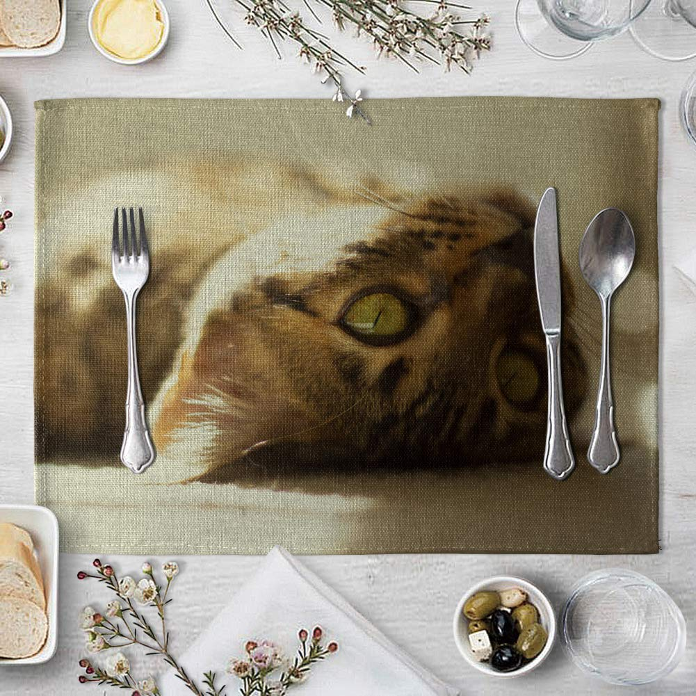 memorytime Cute 3D Cat Print Placemat Pad Linen Dining Table Insulation Mat Home Decor Kitchen Dining Supplies - 6# by memorytime (Image #7)