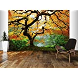 Startonight Mural Wall Art Photo Decor Maple in Garden Large 8 Feet 4-inch By 12-feet Wall Mural for Living Room or Bedroom
