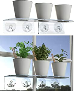 Window Garden Double Veg Ledge Suction Cup Shelf + 4