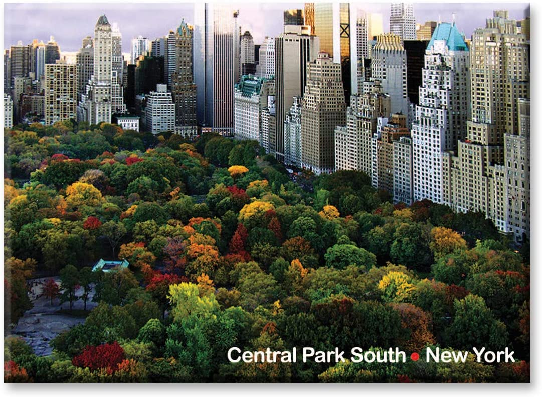 Amazon Com Central Park South Panorama New York City Photo Souvenir Refrigerator Magnet Nyc Fridge Magnets Central Park Poster Kitchen Dining