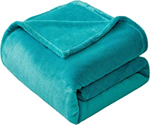 VEEYOO Fleece Blanket Queen Size - Ultra Soft Warm Plush Blanket All Seasons Lightweight Bed Throw Blanket 90 x 90 Inches, Caribbean Blue