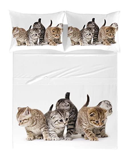 Zenoni & Colombi Sábanas/Colchones para Cama Individual con Gatos en 100% algodón Puro.: Amazon.es: Hogar