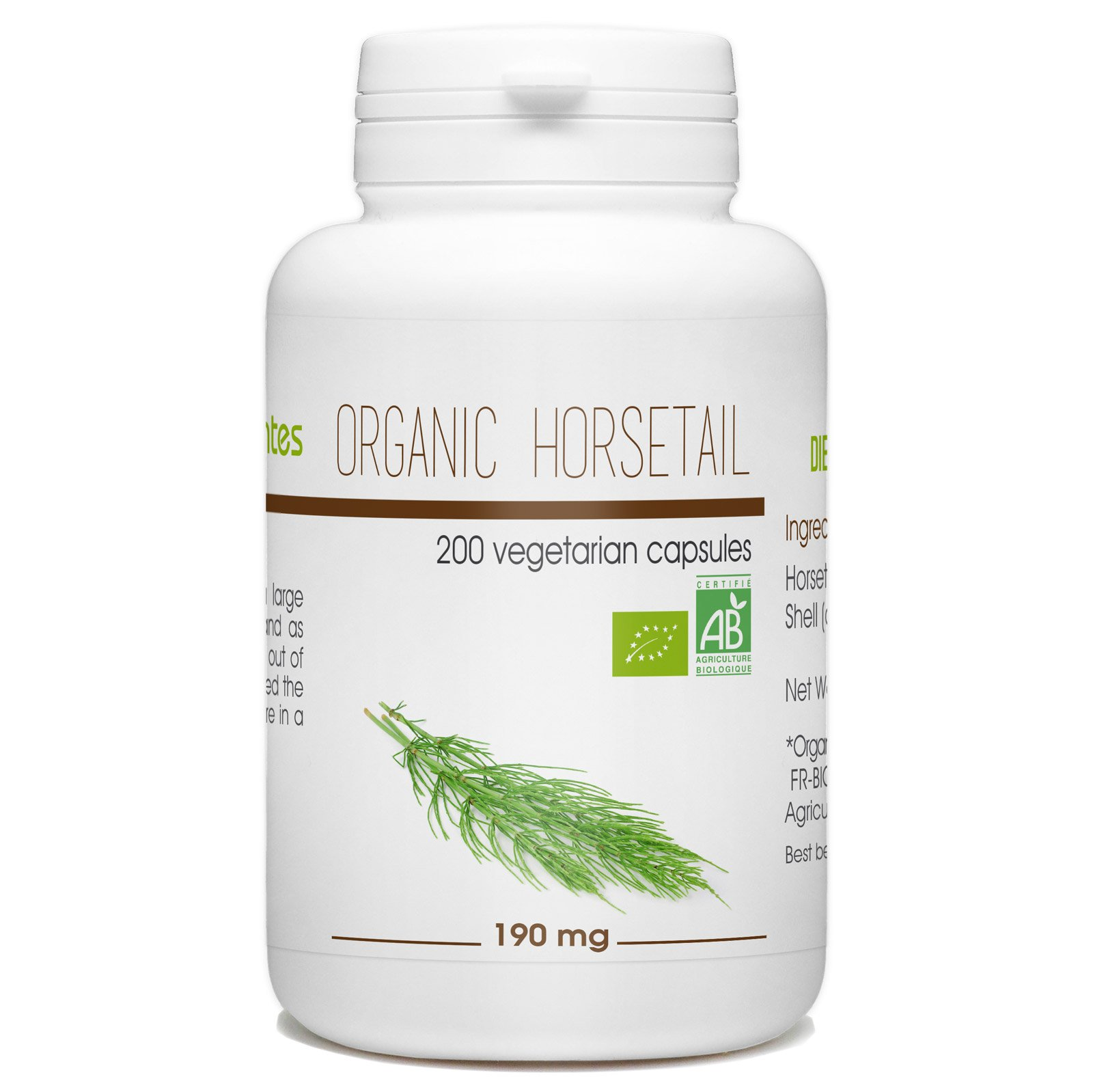 Horsetail 200 Organic Vegetarian Capsules 190 mg by Nature Land Candles