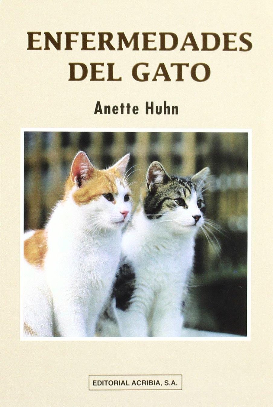 Enfermedades del Gato (Spanish Edition) (Spanish) Paperback – May, 2001