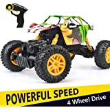 DOUBLE E 4WD RC Rock Crawler 1/18 Dual Motors Rechargeable Remote Control Truck Off Road RC Car …