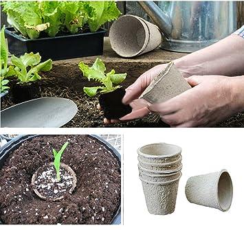 Morebeauty - Macetas de papel para plantas, biodegradables, 30 piezas, ecológicas: Amazon.es: Jardín