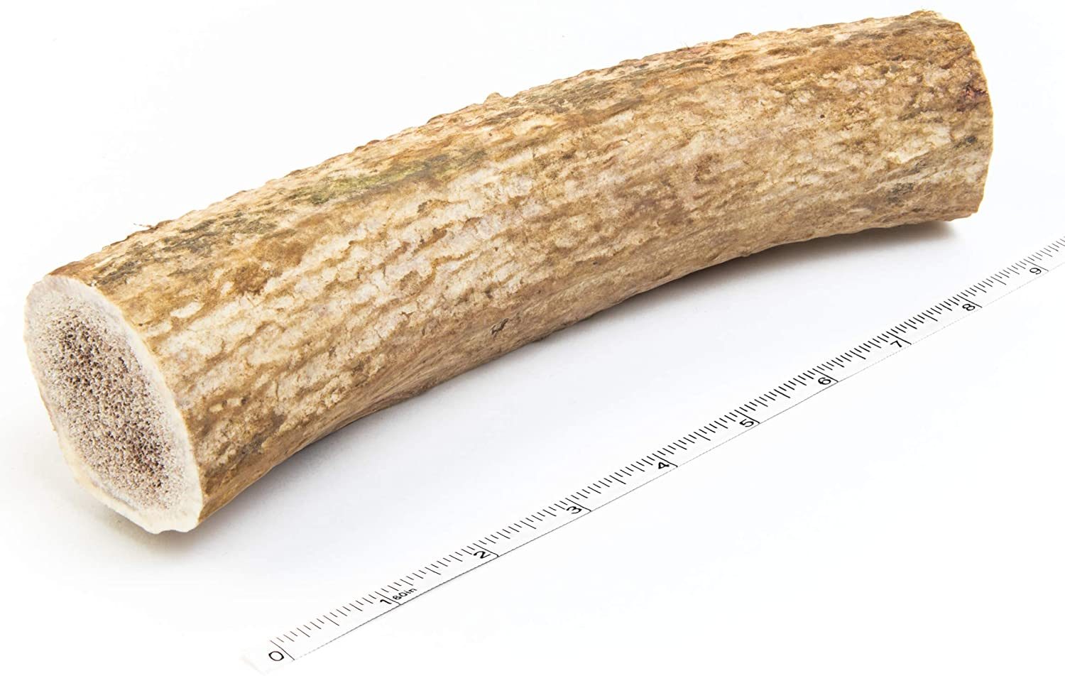 Giant, Monster Sized, Premium Elk Antler Dog Chew – 13 Oz XXXL Super Jumbo Antler For Dogs – Long Lasting Dog Bone – Best Dog Bones for Aggressive Chewers – USA Sourced – Veteran Owned Company