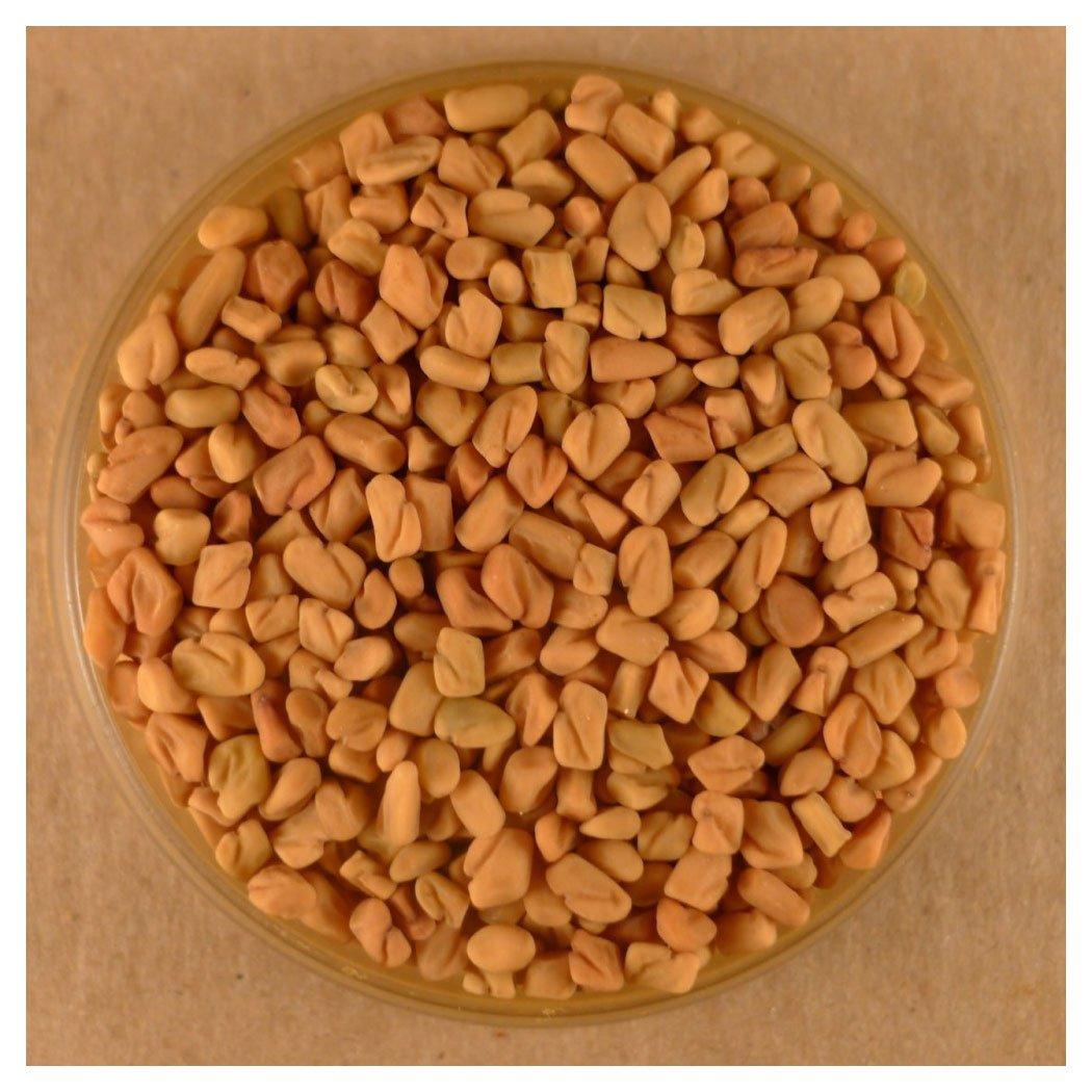 Fenugreek Seed - Whole - 5 LB