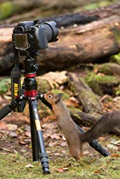 I had been looking for a good tripod for sometime