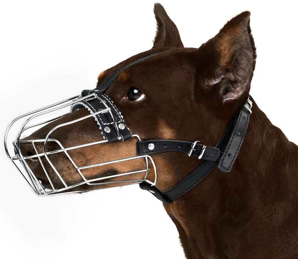 BronzeDog Wire Basket Dog Muzzle Doberman, Metal Dog Muzzle Leather Adjustable (M)
