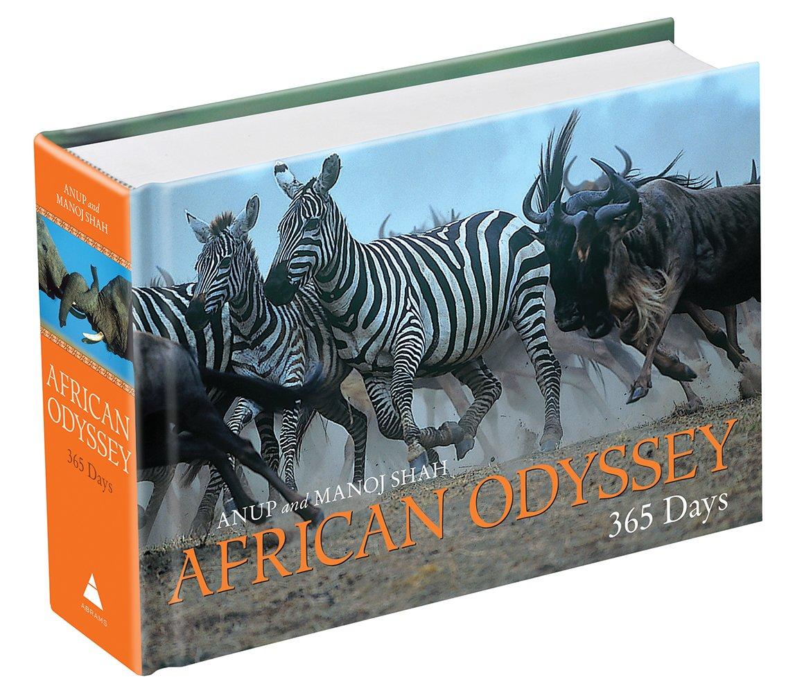 African Odyssey: 365 Days ebook