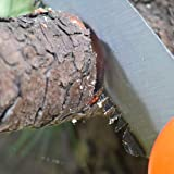 TOOLZYZ Folding Hand Saw for Tree Pruning