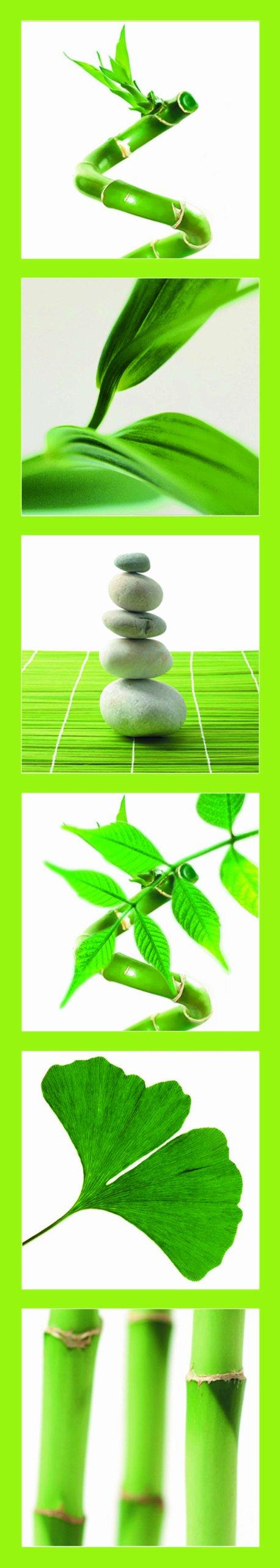 Vinilo Decorativo Pared [08VAL8EI] bambu ginkgo piedras