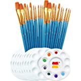 20Pcs Paint Brushes with 10Pcs Round Palette Trays for Kids and Adults Acrylic Oil Watercolor DIY Detail and Miniature Craft