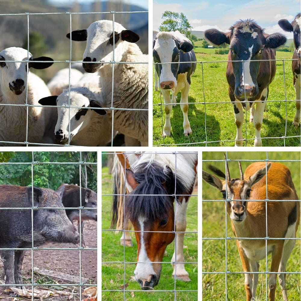 Amagabeli 0.8M x 50M Wire Stock Fencing Heavy Duty Hot Dipped Galvanized Netting High Tensile Garden Farm Paddock Boundary Security Fence Anti Climbing Livestock Fence for Dog Pig Sheep Deer Cow