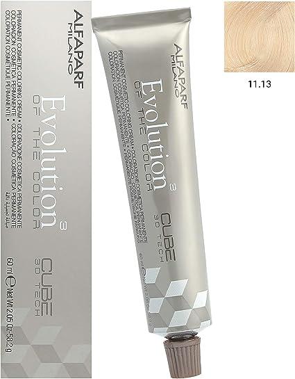 AlfaParf Evolution Tinte Capilar 11,13-60 gr: Amazon.es: Belleza