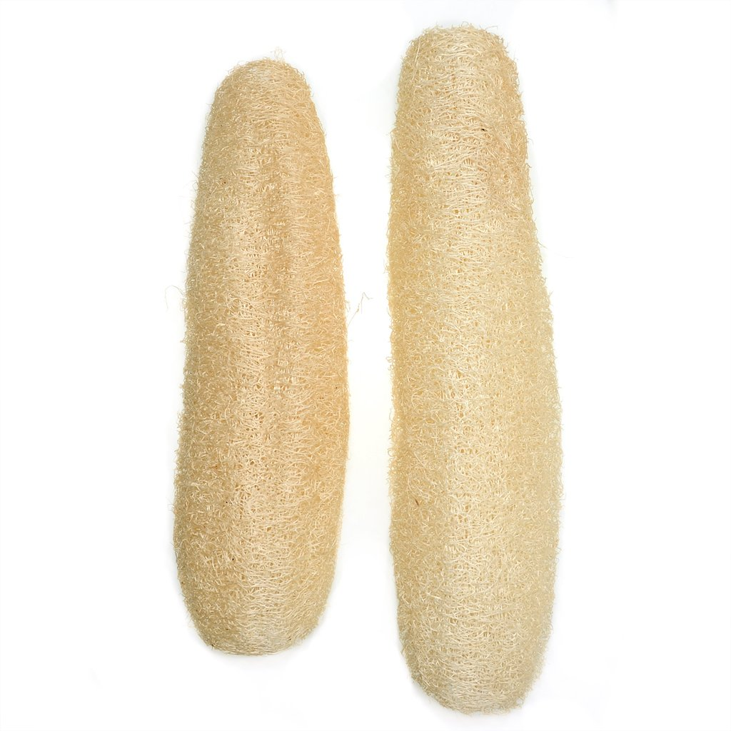 Babofarm's Two Whole Luxurious All Natrual Egyptian Loofah Sponge Body Scrubber, organic lofa loofah luffa exceptionally gental exfoliator for skin care