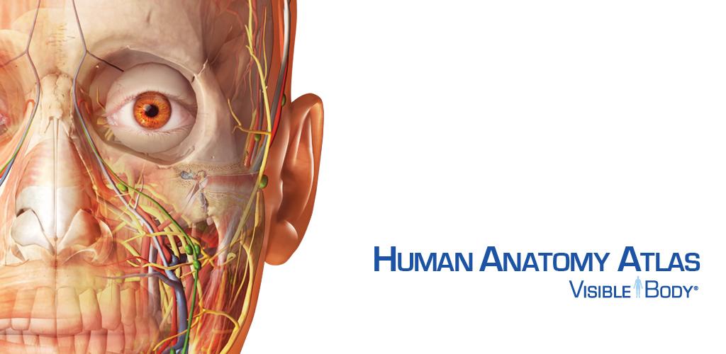 visible body 3d human anatomy atlas 2 for mac free