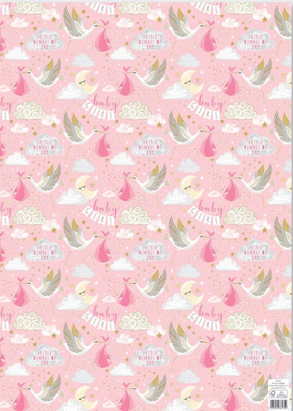 WP139 Rachel Ellen Carta da regalo 4 fogli di carta regalo Baby Girl Little Bundle of Joy Design