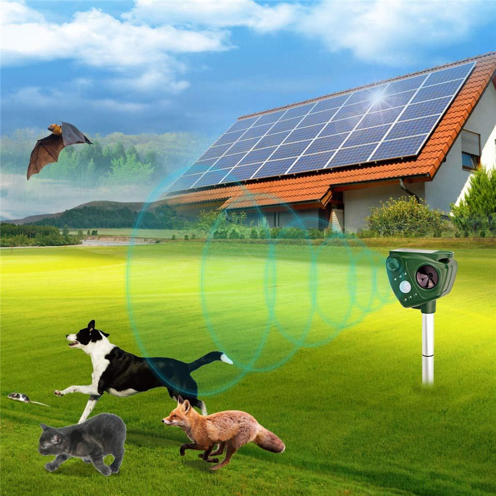 Mejora De La Energía Solar Al Aire Libre De Animales Y Roedores Ahuyentador De Plagas para Perros, Gatos, Ciervos, Aves, Etc: Amazon.es: Deportes y aire ...