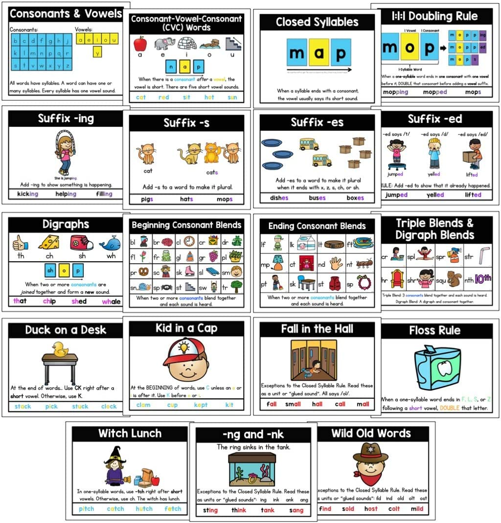 """PDX Reading Specialist Phonic Rules Display Posters - Set of 19 Phonics Reading Charts - Perfect for Kindergarten, Grade School Classroom & At Home Schooling - Bright Fun Art on 8.5"""" x 11"""" Card Stock"""