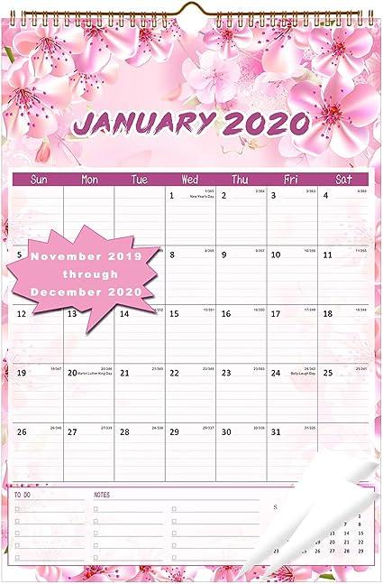 Calendario 2020 - Calendario de pared 2020 de 12 pulgadas x 17 pulgadas, calendario planificador 2019-2020, 14 meses para organizar y planificar: Amazon.es: Oficina y papelería
