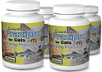 amazon com guardian 3ct fish praziguard praziquantel 23mg capsules