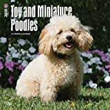 Toy and Miniature Poodles 2018 12 x 12 Inch Monthly Square Wall Calendar, Animals Small Dog Breeds (Multilingual Edition)