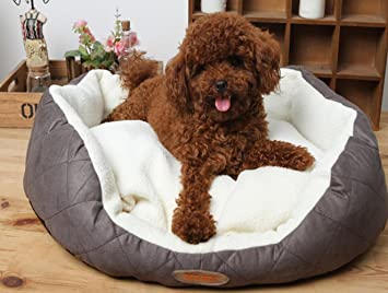 Nidos para mascotas Colchones para mascotas Camas para mascotas Nido de peluche: Amazon.es: Productos para mascotas