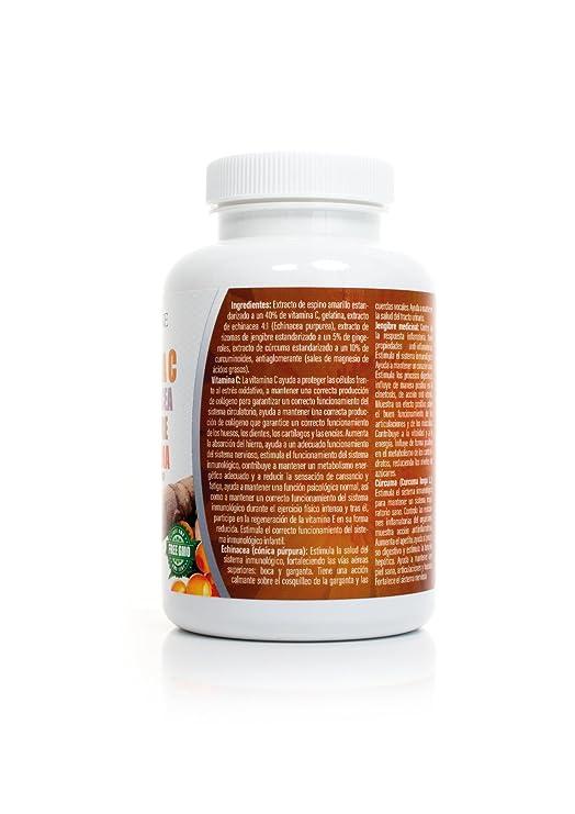 Vitamina C + Echinacea+Jengibre+Curcuma 100 Capsulas: Amazon.es: Salud y cuidado personal