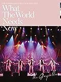 """ゴスペラーズ坂ツアー2018〜2019 """"What The World Needs Now""""(通常盤)(特典なし) [DVD]"""