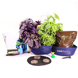 Seedsheet, Grow Your Own Mini Pesto Kit, Container Garden, Organic Seed Pods, Sweet Basil, Purple Basil, Greek Basil, Full Kit, As Seen on Shark Tank