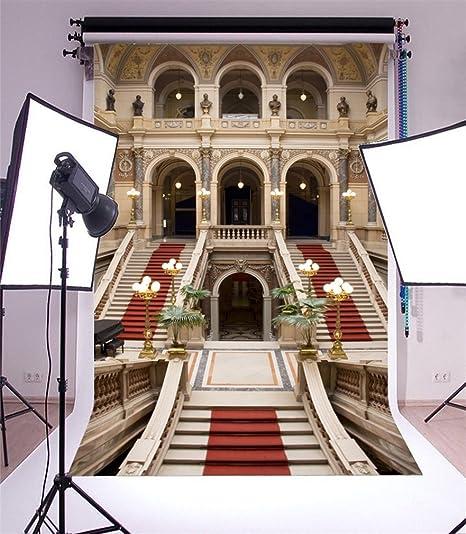 YongFoto 2x3m Vinilo Fondo de Fotografia Castillo Lujo Arquitectura Europea Elegante Escalera Alfombra roja Arco Telón de Fondo Fiesta Boda Adulto Retrato Personal Estudio Fotográfico Accesorios: Amazon.es: Electrónica