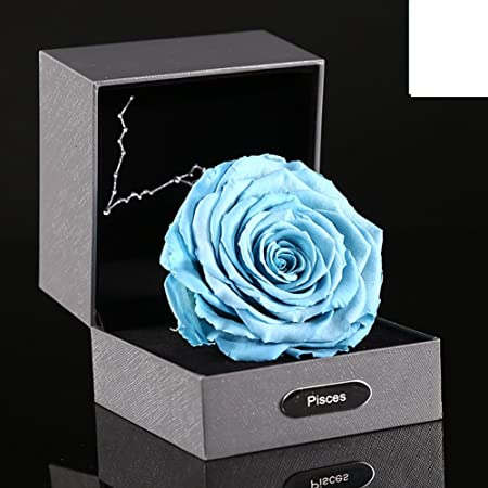 12 Zodiac Signs Live Roses Gift Box Giant Blue Rose Eternal Flower