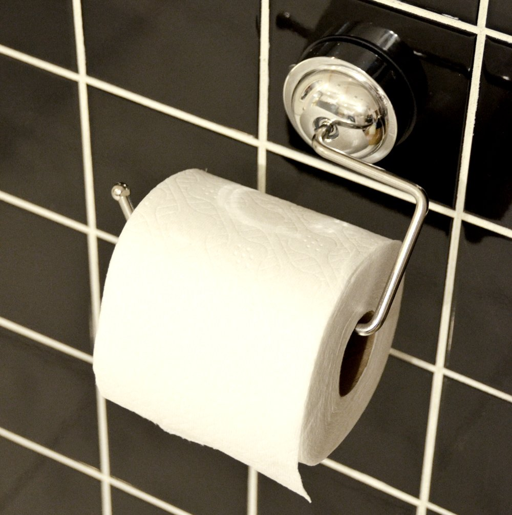 Genexice Stainless Steel Suction Toilet Paper Holder