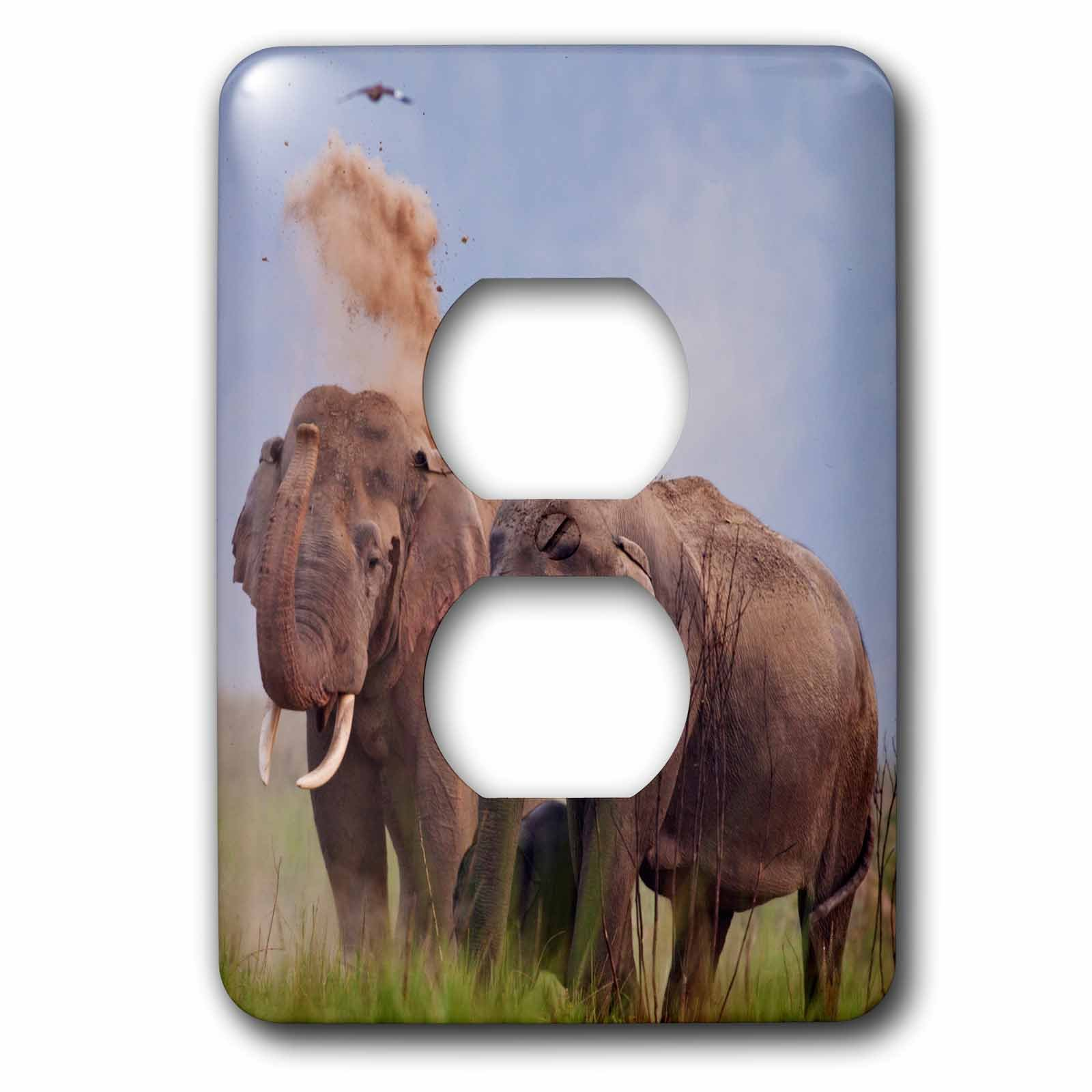 3dRose lsp_210336_6 Pair Of Indian Asian Elephant, Corbett National Park, India. - 2 Plug Outlet Cover