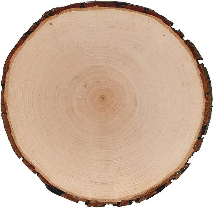 Holzscheibe,27-30 x 3 cm teilweise ohne Rinde 5 Baumscheiben Esche