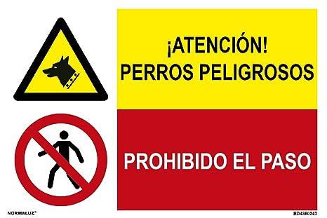 Normaluz FRD4300243 - Señal Combinada Homologada ¡ Atención ...